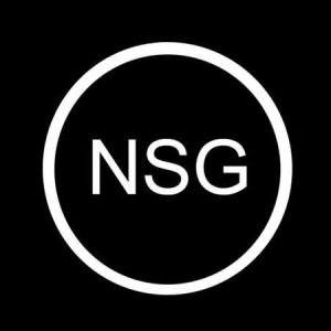 The NSG Hangout logo